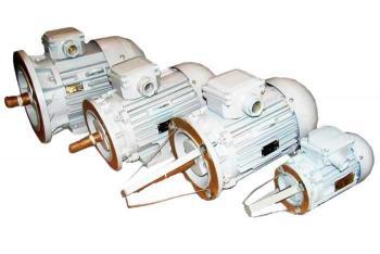 Двигатель асинхронный 2ДМШОР112МА2УХЛ
